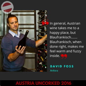 Austria Uncorked Template-6